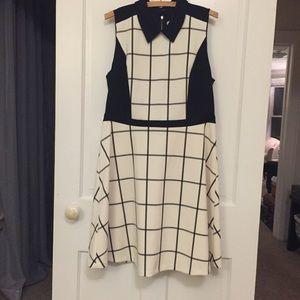 NWT Loft windowpane fit and flare dress!